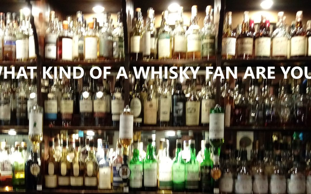 What kind of a whisky fan are you?